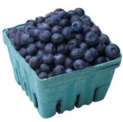 Fff_fruit_blueberries